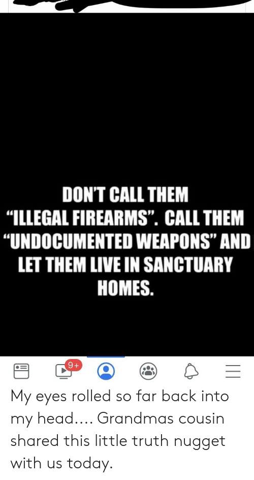 """Head, Live, and Today: DON'T CALL THEM  """"ILLEGAL FIREARMS"""". CALL THEM  """"UNDOCUMENTED WEAPONS"""" AND  LET THEM LIVE IN SANCTUARY  HOMES. My eyes rolled so far back into my head.... Grandmas cousin shared this little truth nugget with us today."""