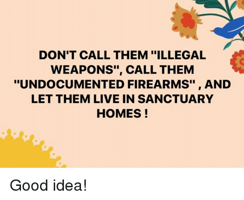"""Memes, Good, and Live: DON'T CALL THEM """"ILLEGAL  WEAPONS"""", CALL THEM  """"UNDOCUMENTED FIREARMS"""", AND  LET THEM LIVE IN SANCTUARY  HOMES! Good idea!"""