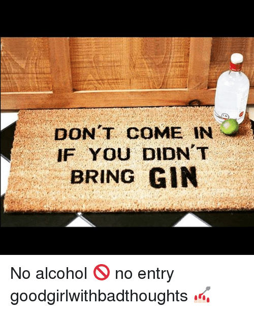 Memes, Alcohol, and 🤖: DONT COME IN  IF YOU DIDN T  BRING GIN No alcohol 🚫 no entry goodgirlwithbadthoughts 💅🏻