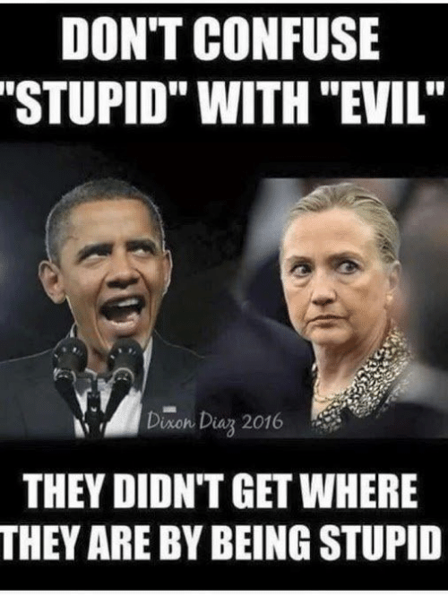 dont confuse stupid with evil diaon dias 2016 they didnt 21262904 don't confuse stupid with evil' diaon dias 2016 they didnt