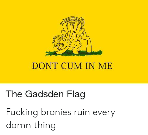 Cum, Fucking, and Bronies: DONT CUM IN ME  The Gadsden Flag Fucking bronies ruin every damn thing