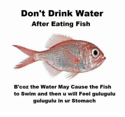Don T Drink Water After Eating Fish Meme