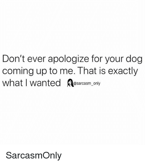 Funny, Memes, and Dog: Don't ever apologize for your dog  coming up to me. That is exactly  what I wanted esarcasm only SarcasmOnly