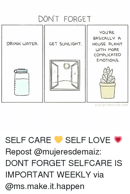Love, Memes, and House: DON'T FORGET  YOU'RE  BASICALLY A  DRINK WATER. GET SUNLIGHT HOUSE PLANT  WITH MORE  COMPLICATED  EMOTIONS. SELF CARE 💛 SELF LOVE 💗 Repost @mujeresdemaiz: DONT FORGET SELFCARE IS IMPORTANT WEEKLY via @ms.make.it.happen