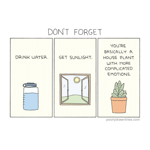 House, Water, and Com: DON'T FORGET  YOU'RE  BASICALLY A  GET SUNLIGHT  DRINK WATER.  HOUSE PLANT  WITH MORE  COMPLICATED  EMOTIONS  poorlydrawnlines.com