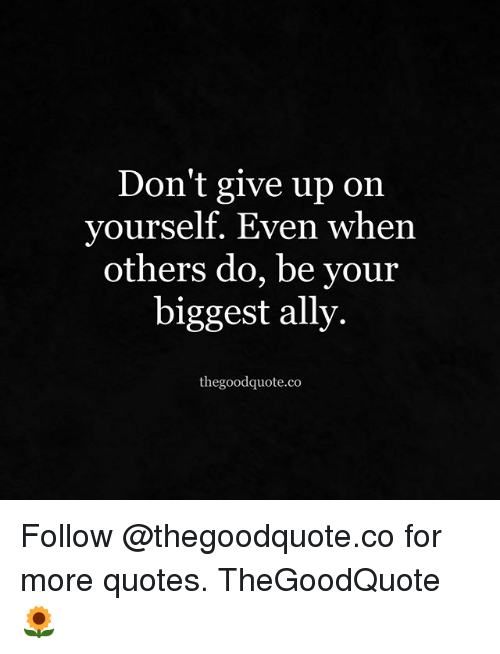 Memes, Ally, And Quotes: Donu0027t Give Up On Yourself. Even