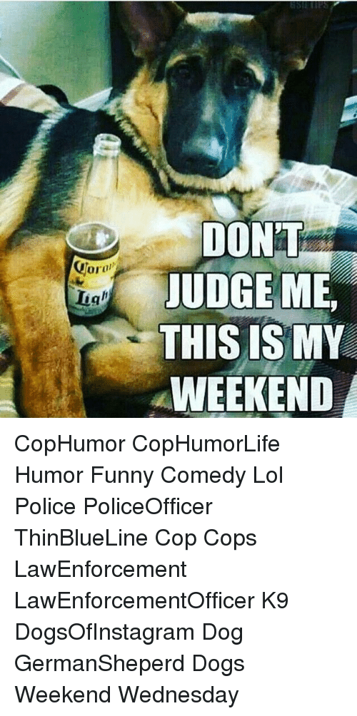 Dogs, Funny, and Lol: DON'T  JUDGE ME  THIS IS MY  WEEKEND CopHumor CopHumorLife Humor Funny Comedy Lol Police PoliceOfficer ThinBlueLine Cop Cops LawEnforcement LawEnforcementOfficer K9 DogsOfInstagram Dog GermanSheperd Dogs Weekend Wednesday
