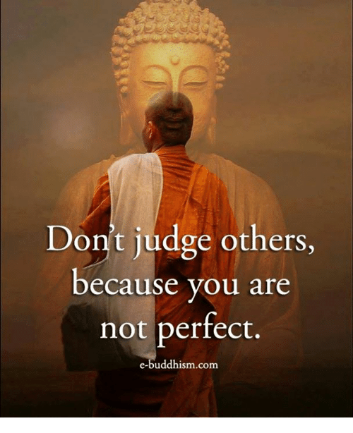 Memes, Buddhism, and 🤖: Don't judge others,  because you are  not perfect.  e-buddhism com
