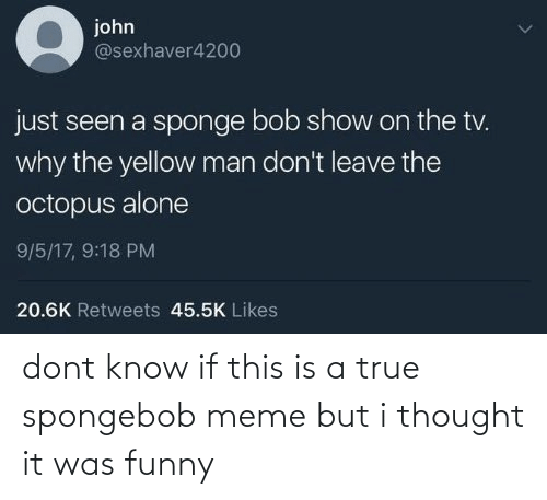 Funny, Meme, and SpongeBob: dont know if this is a true spongebob meme but i thought it was funny