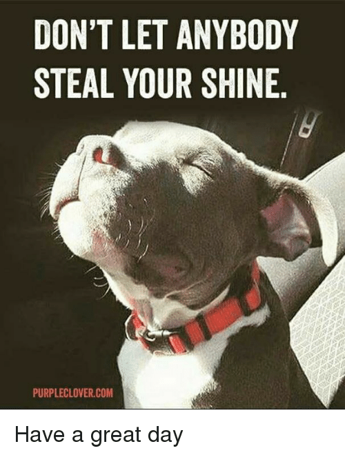 Dont Let Anybody Steal Your Shine Purpleclovercom Have A Great Day