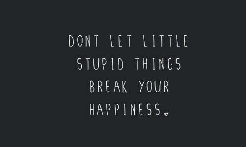 Break, Happiness, and Stupid: DONT LET LITTL  STUPID THINGS  BREAK YOUR  HAPPINESS