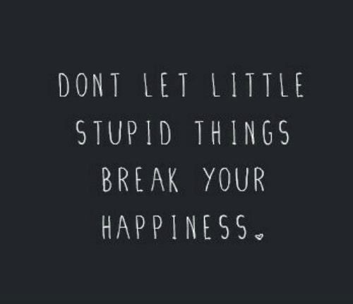 Break, Happiness, and Stupid: DONT LET LITTLt  STUPID THINGS  BREAK YOUR  HAPPINESS