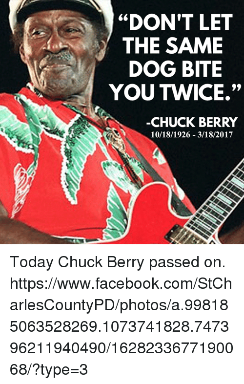 dont let the same dog bite you twice chuck berry 17595595 don't let the same dog bite you twice chuck berry 10181926 3182017
