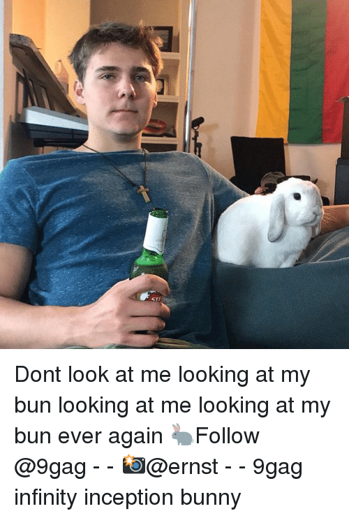 9gag, Inception, and Memes: Dont look at me looking at my bun looking at me looking at my bun ever again 🐇Follow @9gag - - 📸@ernst - - 9gag infinity inception bunny