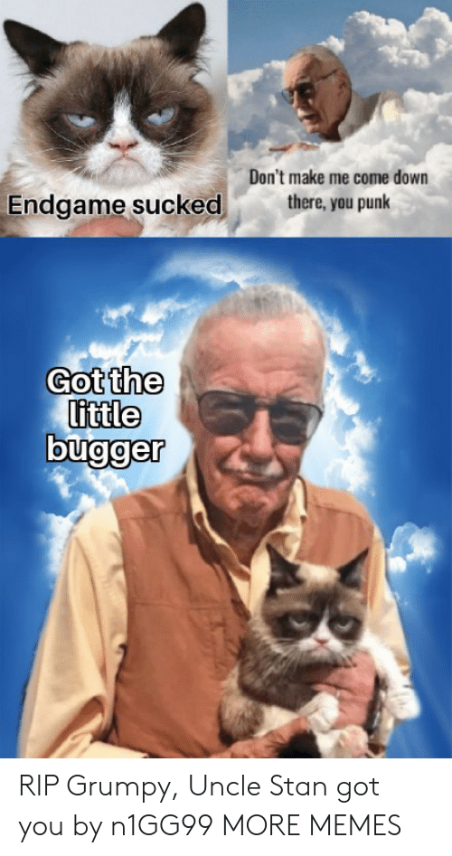 Dank, Memes, and Stan: Don't make me come down  there, you punk  Endgame sucked  Got the  little RIP Grumpy, Uncle Stan got you by n1GG99 MORE MEMES