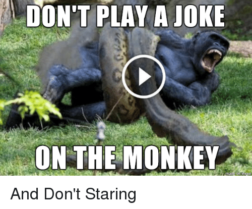 Don T Play A Joke On The Monkey And Don T Staring Funny