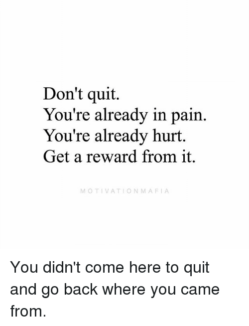 Memes, Pain, and Back: Don't quit.  You're alreadv in pain.  You're already hurt  Get a reward from it.  MOTIVATIONMAFIA You didn't come here to quit and go back where you came from.