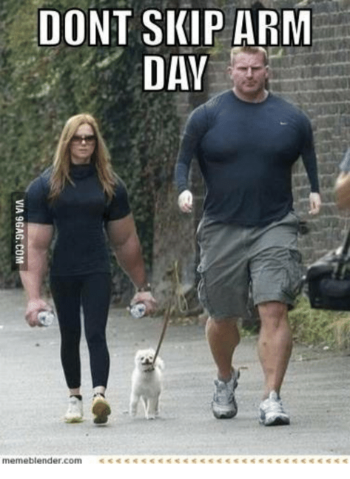 Image result for don't forget arm day meme