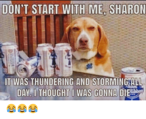 Memes, Thought, and 🤖: DONT START WITH ME SHARON  IT WAS THUNDERING AND STORMINGALL  DAY. I THOUGHT WAS GONNA DIE 😂😂😂