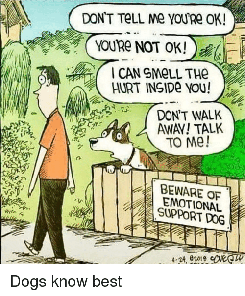 Dogs, Smell, and Best: DON'T TeLL Me YOuRe OK  YOURe NOT OK!)  CAN SMeLL THe  HURT INSIDe YOU!  DON'T WALK  AWAV! TALK  то ме!  BEWARE OF  EMOTIONAL  SUPPORT DOG Dogs know best