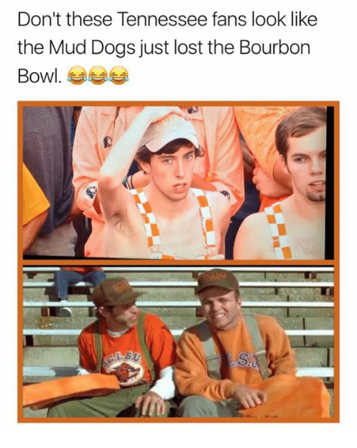 Dogs, Nfl, and Lost: Don't these Tennessee fans look like  the Mud Dogs just lost the Bourbon  Bowl