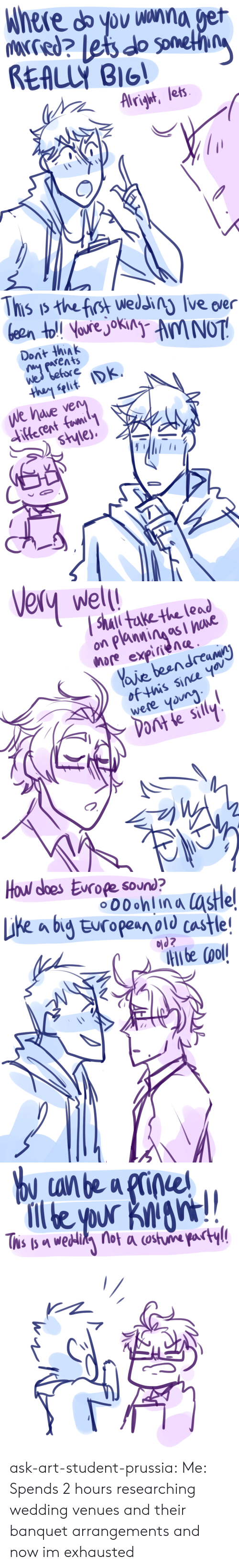 Target, Tumblr, and Blog: Dont thiAk  wes belore  We have ve   Wel  2 0  hore expirnene  of this sine yov  were youn  ร์เ  Pont le sily   hou dhes Eiroep 0uhn a taste  Like a bg Europen old castle   we ask-art-student-prussia:  Me: Spends 2 hours researching wedding venues and their banquet arrangements and now im exhausted