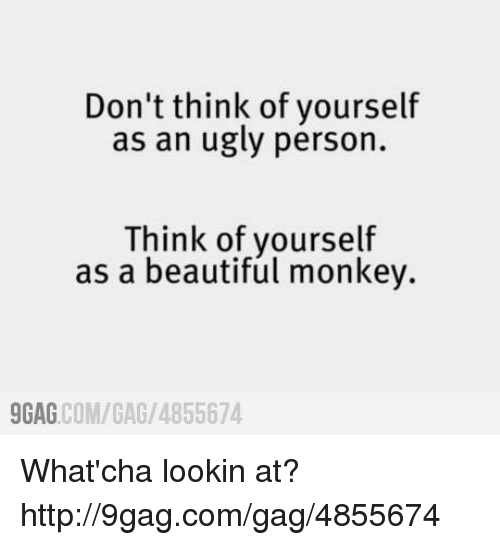 9gag, Beautiful, and Dank: Don't think of yourself  as an ugly person.  Think of yourself  as a beautiful monkey.  COM/GAG /4855674  9GAG What'cha lookin at? http://9gag.com/gag/4855674