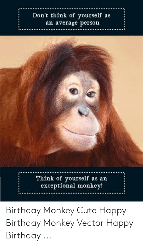 Birthday, Cute, and Happy Birthday: Don't think of yourself as  average person  ..ARVETage person  Think of yourself as an  exceptional monkey! Birthday Monkey Cute Happy Birthday Monkey Vector Happy Birthday ...