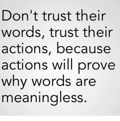 Why, Will, and Words: Don't trust their  words, trust their  actions, because  actions will prove  why words are  meaningless