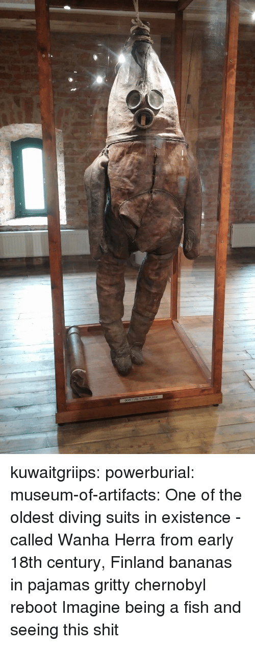 Shit, Target, and Tumblr: DON'T USE FLASH, PLEASE kuwaitgriips:  powerburial:  museum-of-artifacts: One of the oldest diving suits in existence - called   Wanha Herra from early 18th century, Finland  bananas in pajamas gritty chernobyl reboot   Imagine being a fish and seeing this shit