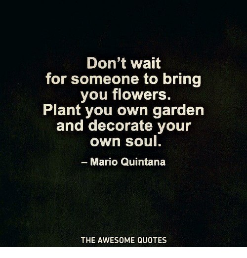 Don't Wait For Someone To Bring You Flowers Plant You Own Garden And Amazing Waiting For Someone Quotes