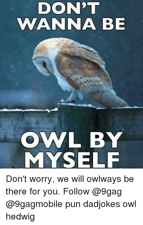 Memes, 🤖, and Owl: DON'T  WANNA BE  OWVL BY  MYSELF Don't worry, we will owlways be there for you. Follow @9gag @9gagmobile pun dadjokes owl hedwig