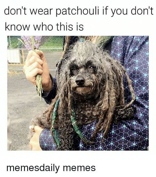 Dont Wear Patchouli If You Dont Know Who This Is Memesdaily Memes