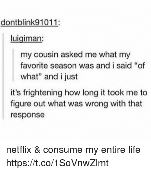 "Life, Memes, and Netflix: dontblink91011:  luigiman  my cousin asked me what my  favorite season was and i said ""of  what"" and i just  it's frightening how long it took me to  figure out what was wrong with that  response netflix & consume my entire life https://t.co/1SoVnwZlmt"