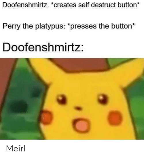 MeIRL, Platypus, and Button: Doofenshmirtz: *creates self destruct button  Perry the platypus: *presses the button*  Doofenshmirtz: Meirl