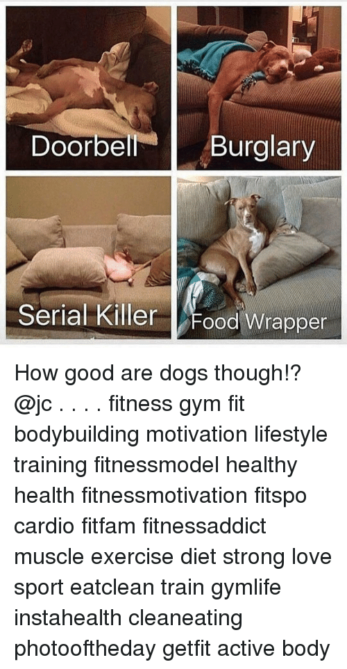 Dogs, Food, and Gym: Doorbell  Burglary  Serial Killer  Food Wrapper How good are dogs though!? @jc . . . . fitness gym fit bodybuilding motivation lifestyle training fitnessmodel healthy health fitnessmotivation fitspo cardio fitfam fitnessaddict muscle exercise diet strong love sport eatclean train gymlife instahealth cleaneating photooftheday getfit active body