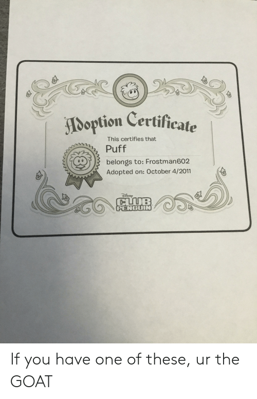 Goat, Penguin, and One: Doption Certificate  This certifies that  Puff  belongs to: Frostman602  Adopted on: October 4/2011  PENGUIN If you have one of these, ur the GOAT