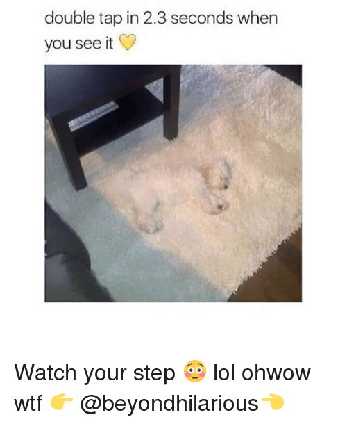 Lol, Memes, and When You See It: double tap in 2.3 seconds when  you see it Watch your step 😳 lol ohwow wtf 👉 @beyondhilarious👈