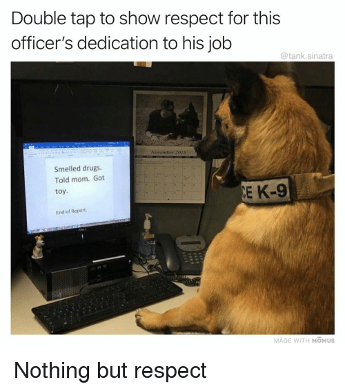 Drugs, Funny, and Respect: Double tap to show respect for this  officer's dedication to his job  @tank.sinatra  November 2018  Smelled drugs.  Told mom. Got  toy  E K-9  End of Report  MADE WITH MOMUS Nothing but respect