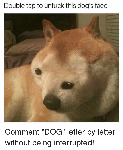 "Dank Memes, Letters, and Dog Face: Double tap to unfuck this dog's face Comment ""DOG"" letter by letter without being interrupted!"