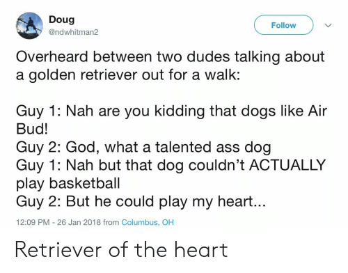Ass, Basketball, and Dogs: Doug  @ndwhitman2  Follow  Overheard between two dudes talking about  a golden retriever out for a walk:  Guy 1: Nah are you kidding that dogs like Air  Bud!  Guy 2: God, what a talented ass dog  Guy 1: Nah but that dog couldn't ACTUALLY  play basketball  Guy 2: But he could play my heart...  12:09 PM - 26 Jan 2018 from Columbus, OH Retriever of the heart