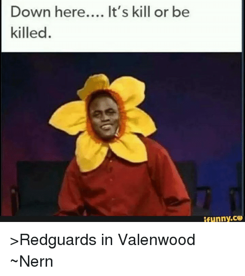 down here its kill or be killed ifunny co %3Eredguards in 5901925 down here it's kill or be killed ifunnyco \u003eredguards in valenwood