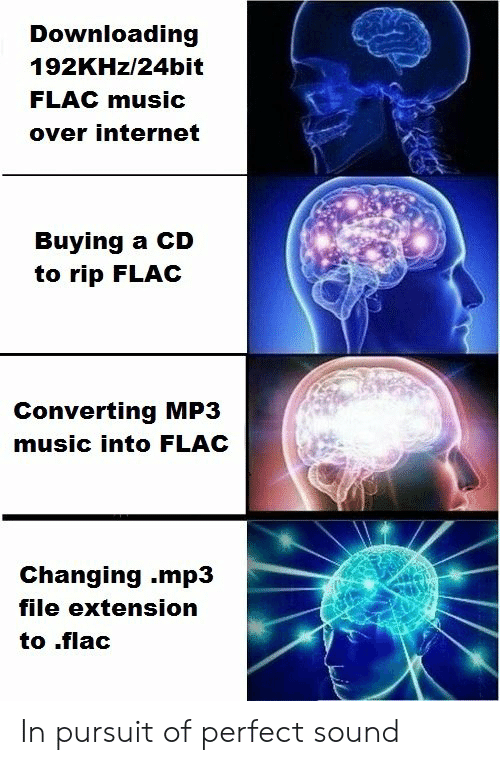 Downloading 192KHz24bit FLAC Music Over Internet Buying a CD to Rip