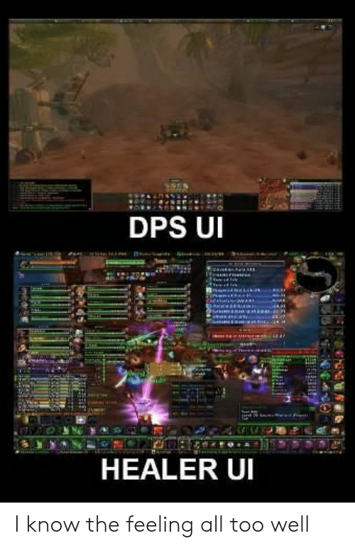 Healer, All, and Dps: DPS U  HEALER UI I know the feeling all too well