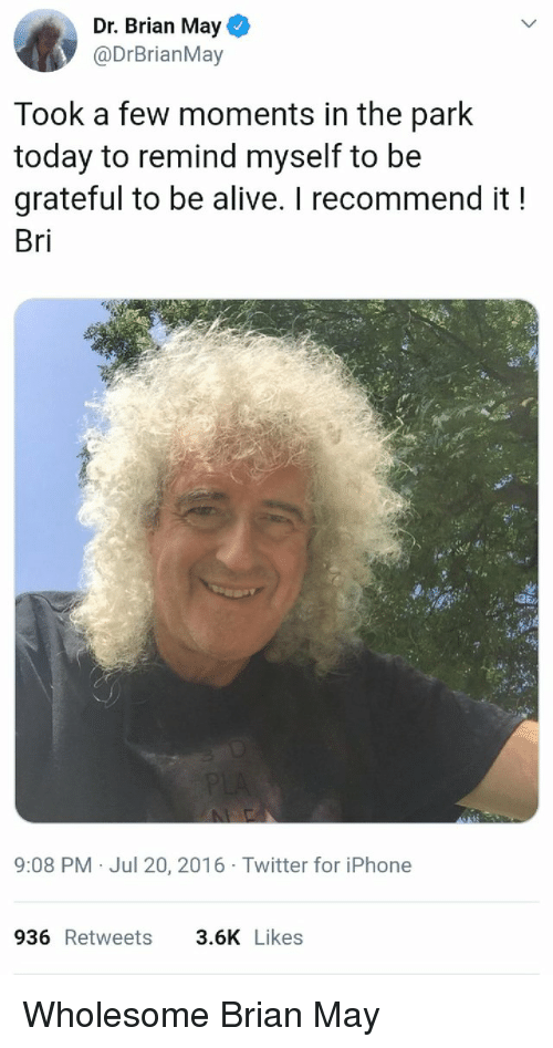 Alive, Iphone, and Twitter: Dr. Brian May  @DrBrianMay  Took a few moments in the park  today to remind myself to be  grateful to be alive. I recommend it!  Bri  9:08 PM Jul 20, 2016 Twitter for iPhone  936 Retweets  3.6K Likes