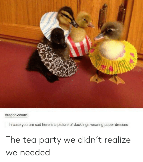 Party, Dresses, and Sad: dragon-bourn  In case you are sad here is a picture of ducklings wearing paper dresses The tea party we didn't realize we needed