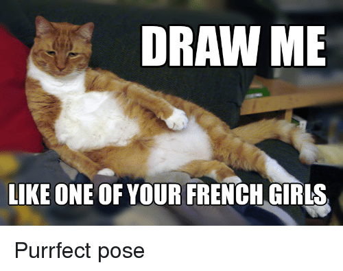 Draw Me Like One Of Your French Girls Purrfect Pose Girls Meme On