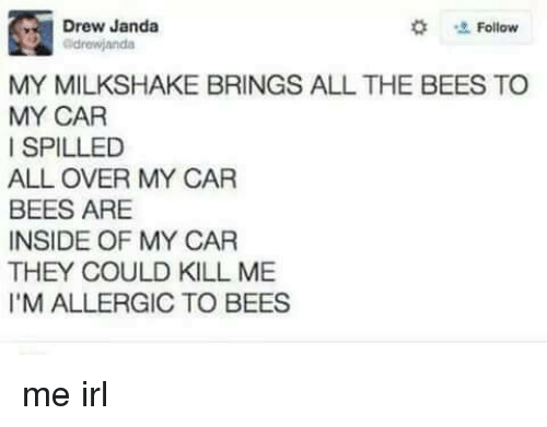 Irl, Me IRL, and All The: Drew Janda  #  Follow  drewjanda  MY MILKSHAKE BRINGS ALL THE BEES TO  MY CAR  I SPILLED  ALL OVER MY CAR  BEES ARE  INSIDE OF MY CAR  THEY COULD KILL ME  I'M ALLERGIC TO BEES me irl