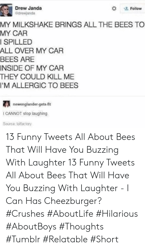 Funny, Tumblr, and Relatable: Drew Janda  ' Follow  MY MILKSHAKE BRINGS ALL THE BEES TO  MY CAR  ISPILLED  ALL OVER MY CAR  BEES ARE  INSIDE OF MY CAR  THEY COULD KILL ME  I'M ALLERGIC TO BEES  newenglander-gets-fit  I CANNOT stop laughing  Source lolfactory 13 Funny Tweets All About Bees That Will Have You Buzzing With Laughter 13 Funny Tweets All About Bees That Will Have You Buzzing With Laughter - I Can Has Cheezburger? #Crushes #AboutLife #Hilarious #AboutBoys #Thoughts #Tumblr #Relatable #Short