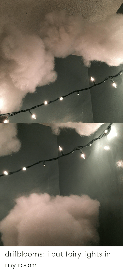 Drifblooms I Put Fairy Lights in My Room | Tumblr Meme on ME.ME